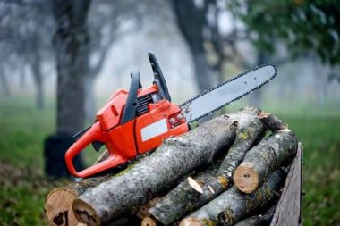 Best Homeowner Chainsaws